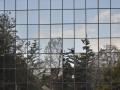 5-reflection-3275895_1920_vitre oiseau