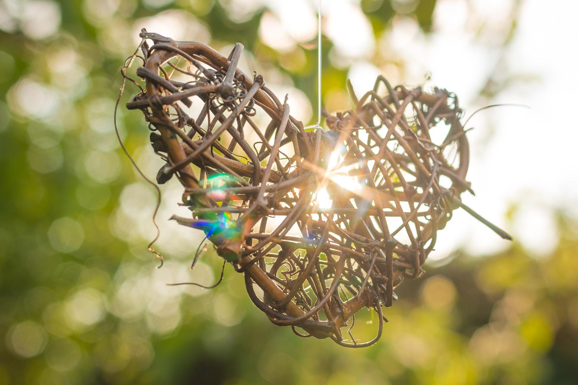 44-heart-814950_1920_journée biodiversité